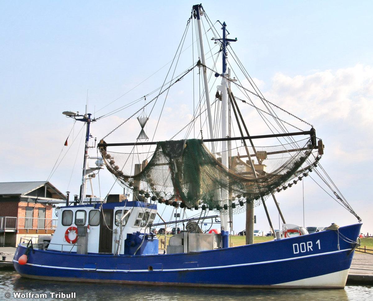 DOR 1 STURMVOGEL aufgenommen am 17.07.2018 im Hafen von Dorum-Neufeld