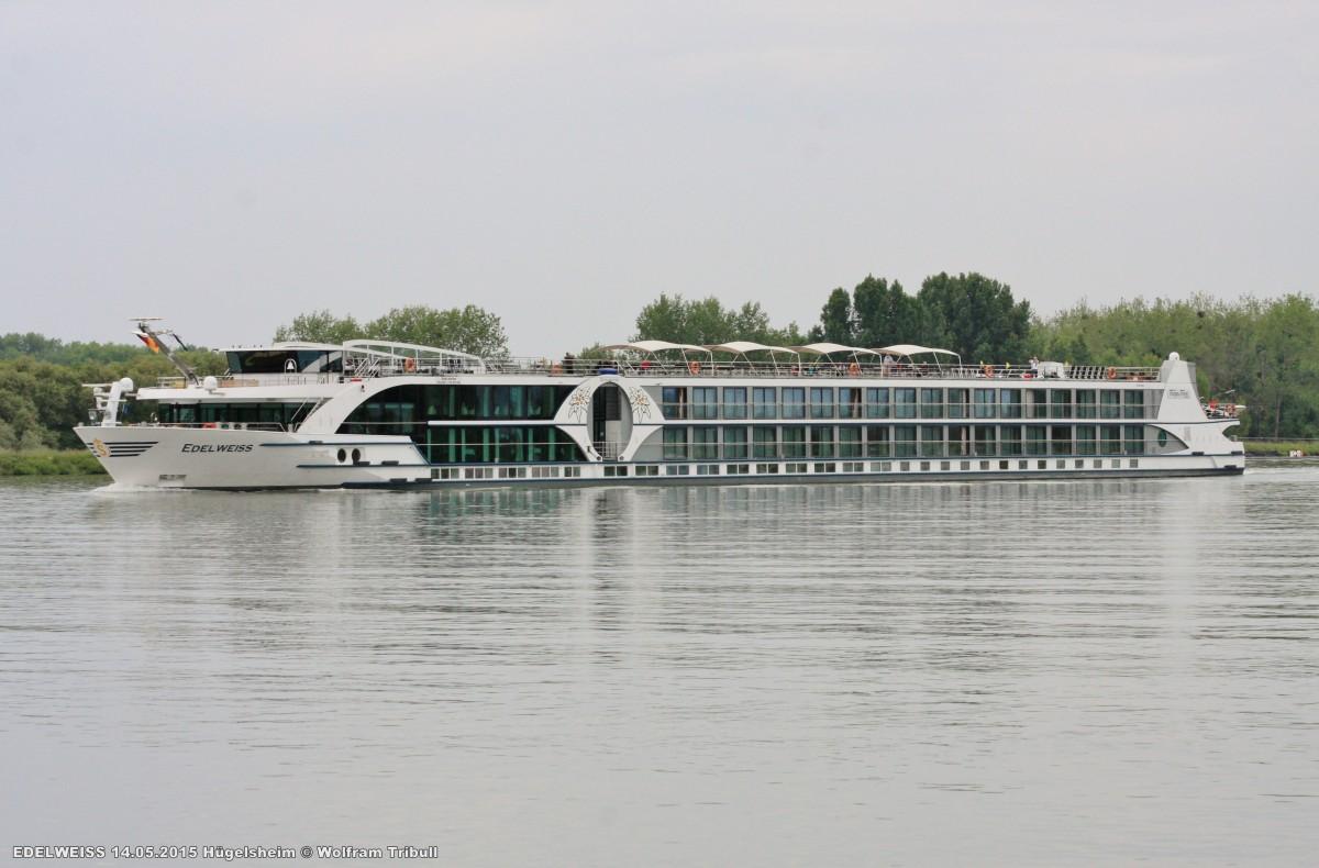 EDELWEISS am 14.05.2015 auf dem Rhein bei Hügelsheim