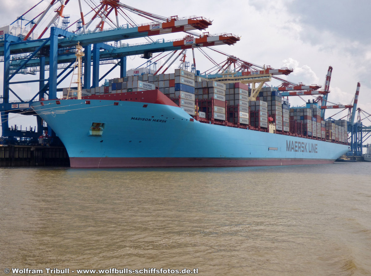 MADISON MAERSK aufgenommen am 03.08.2014 bei Bremerhaven Höhe Container Terminal NTB