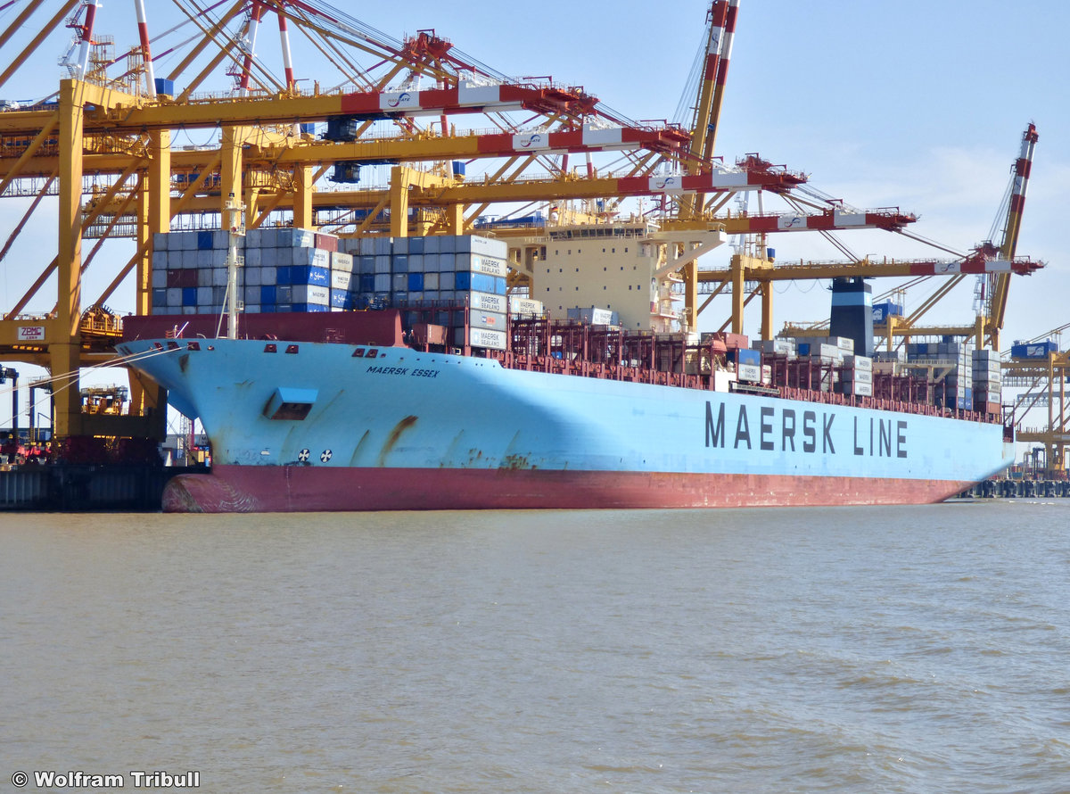 MAERSK ESSEX am 03. August 2015 bei Bremerhaven Höhe Container Terminal Eurogate