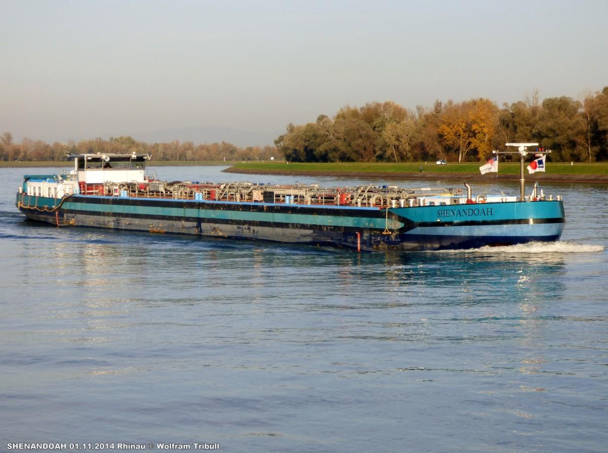 SHENANDOAH aufgenommen am 01.11.2014 auf dem Rhein bei Rhinau (Frankreich)